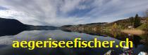 aegeriseefischer.ch